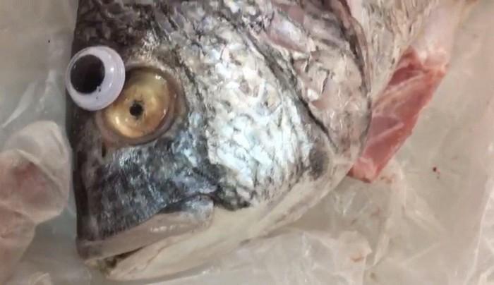 Как придать рыбе свежесть? Нужно приклеить ей глаза!