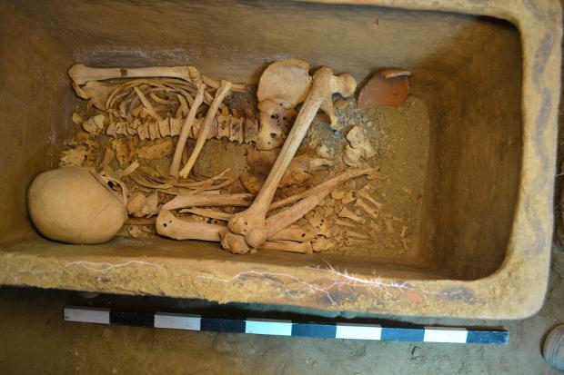 Греческий фермер случайно обнаружил древнюю гробницу