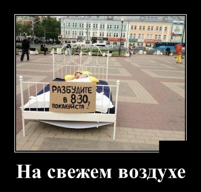 Подборка прикольных демотиваторов №1205