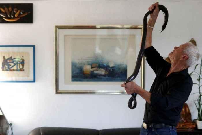 Дом французского пенсирнера стал убежищем для четырех сотен змей, крокодилов и тарантулов
