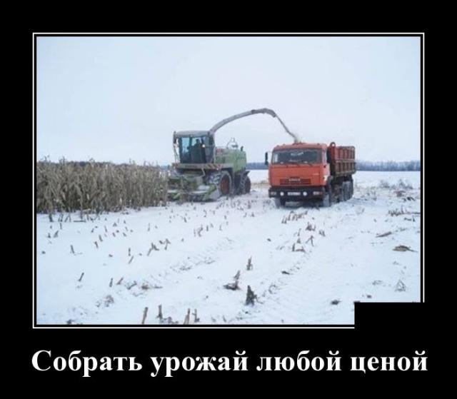 Подборка прикольных демотиваторов №1214