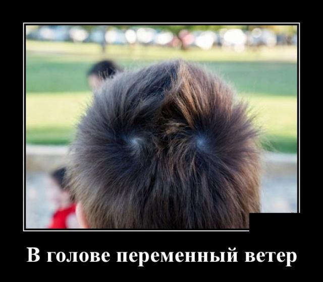 Подборка прикольных демотиваторов №1246