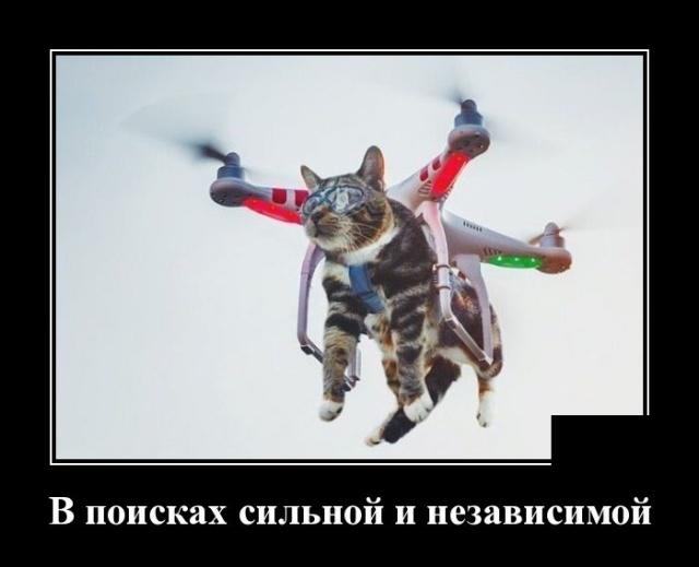 Подборка прикольных демотиваторов №1254