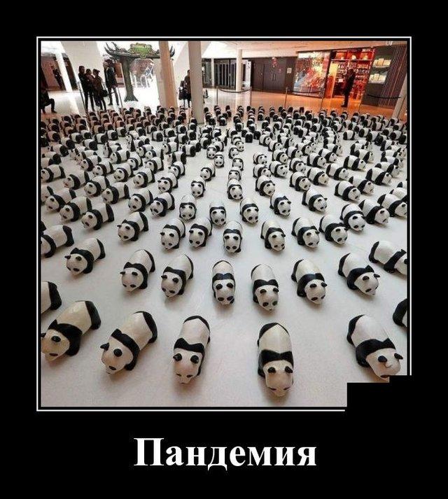 Подборка прикольных демотиваторов №1263