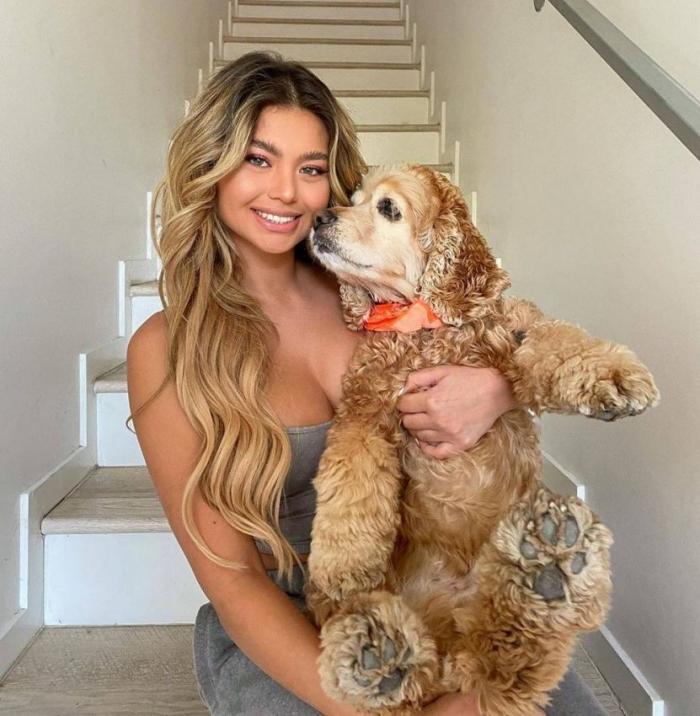 Дамы с собачками